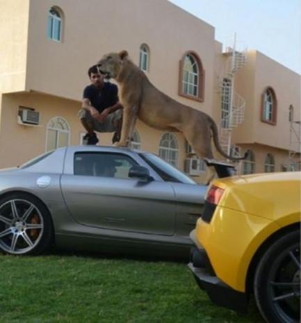 Arap zenginlerin ilginç paylaşımları - Page 1