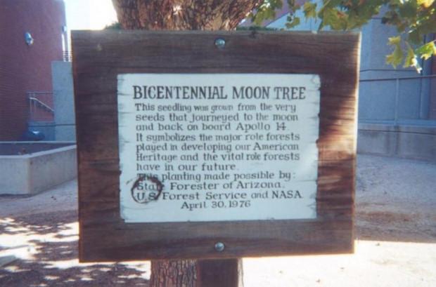 Ay Hakkında Bilmek İsteyeceğiniz 17 Gerçek - Page 3