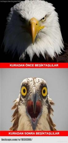 Beşiktaş Liverpool'la eşleşti, sosyal medyada gündem değişti! - Page 4