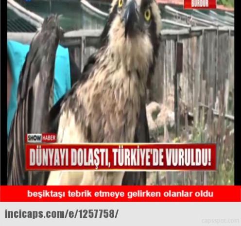 Beşiktaş şampiyon oldu, capsler patladı - Page 2