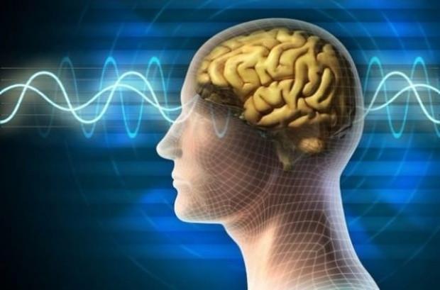 Beyin hakkında şaşırtıcı gerçekler! - Page 1