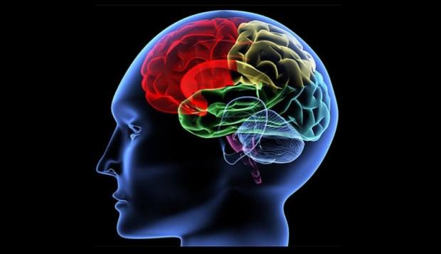 Beyin yaşını hesaplama testi - Page 3