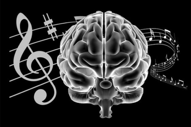 Beyniniz hakkında akıllara durgunluk verecek 15 gerçek - Page 4