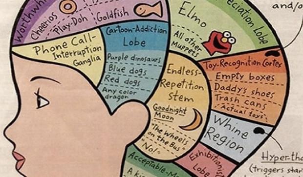 Beyniniz hakkında beyninizin bile haberdar olmadığı ilgi çekici 19 gerçek - Page 4