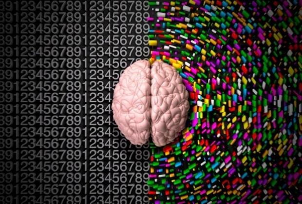 Beyninizin hangi yönünü kullanııyorsunuz? - Page 1