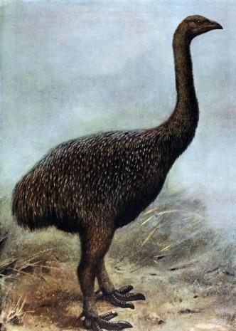 Bilim insanları bu hayvanları geri getirmek istiyor! - Page 1