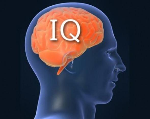 Bir haftada IQ'nuzu yüzde 40 artırın! - Page 1
