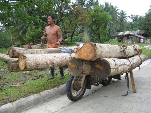 Bir motosikletle neler taşınabilir? - Page 3