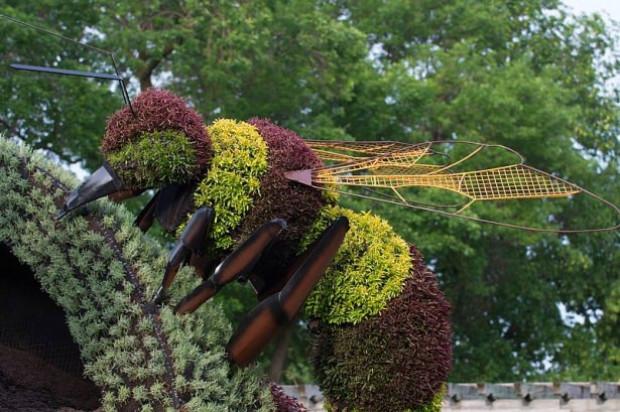 Bitkilerden yapılmış canlı heykeller - Page 1