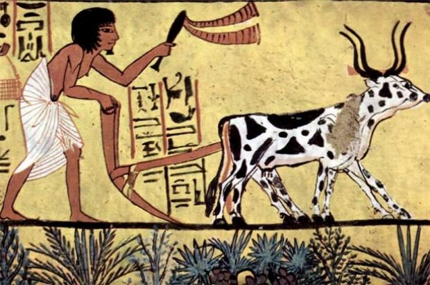 Bu icatları Mısırlıların bulduğunu biliyor muydunuz? - Page 3