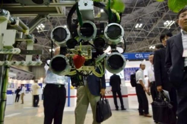 Bu robot meyve topluyor - Page 3