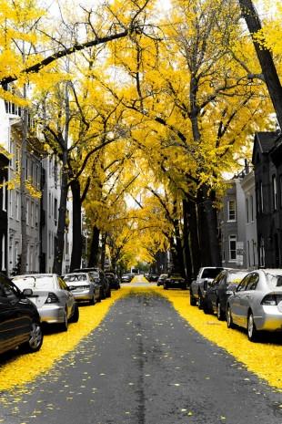 Büyüleyici sokaklar-1 - Page 2