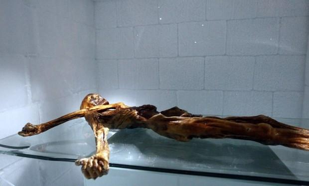 Buz adam Ötzi üç boyutlu baskı teknolojisi kullanılarak kopyalandı - Page 1