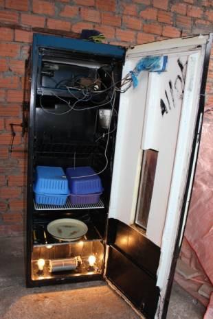 Buzdolabını kuluçka makinesi yaptı - Page 1