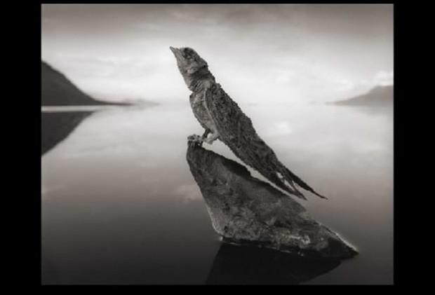 Canlıları mumyaya çeviren göl - Page 4