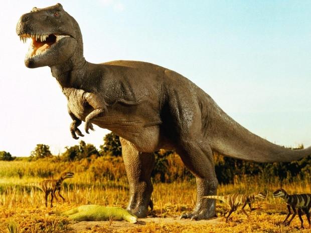 Dinozorları yok eden çifte felaket - Page 1