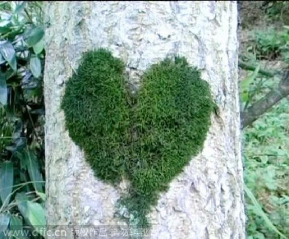Doğa, sevgililer gününü böyle kutladı - Page 3