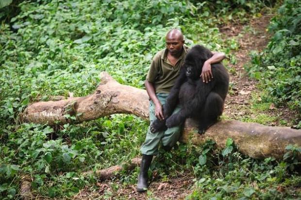 Dünyada iyiliğin varolduğunu kanıtlayan fotoğraflar - Page 3