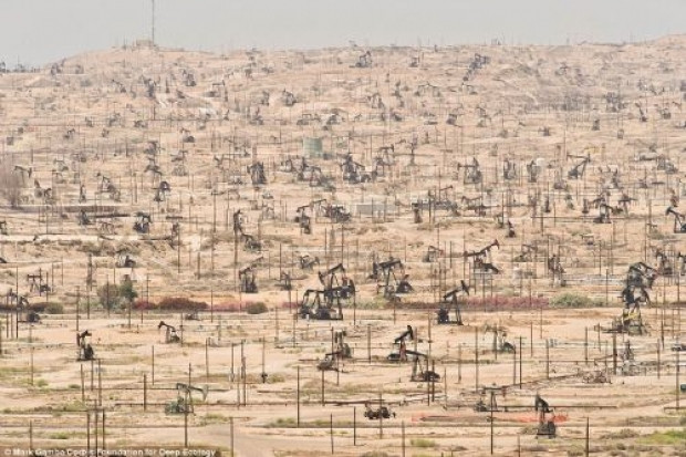 Dünyadaki ekolojik felaketler - Page 1