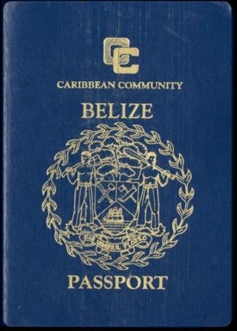 Dünyadaki tüm pasaportlar neden sadece 4 renk? - Page 3