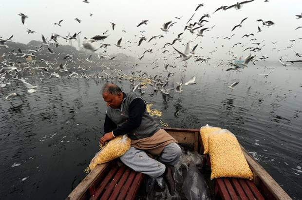 Dünyadan günün en etkileyici fotoğrafları! 2 Ocak - Page 3