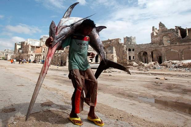 Dünyadan günün fotoğraf galerisi 24.12.2012 - Page 1