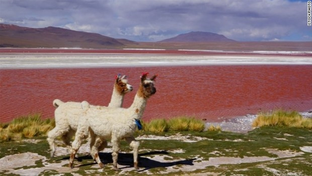 Dünyanın en ilginç gölleri! - Page 4