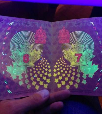 Dünyanın en ilginç pasaportu! - Page 3