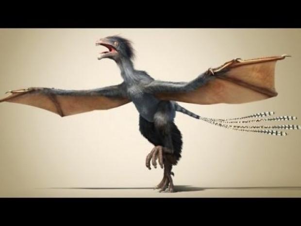 Dünyanın ilk Kuş'u bulundu! - Page 4
