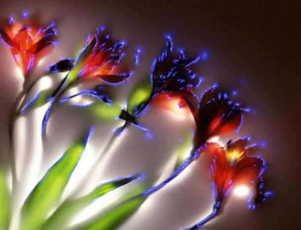 Elektrikli çiçek sanatı - Page 1