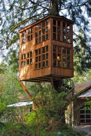 En ilginç ağaç ev tasarımları - Page 1