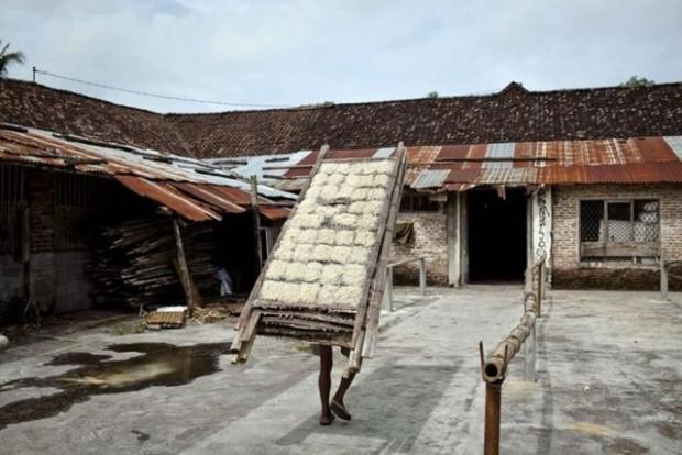 Endonezya'da bir spagetti fabrikası böyle görüntülendi - Page 3