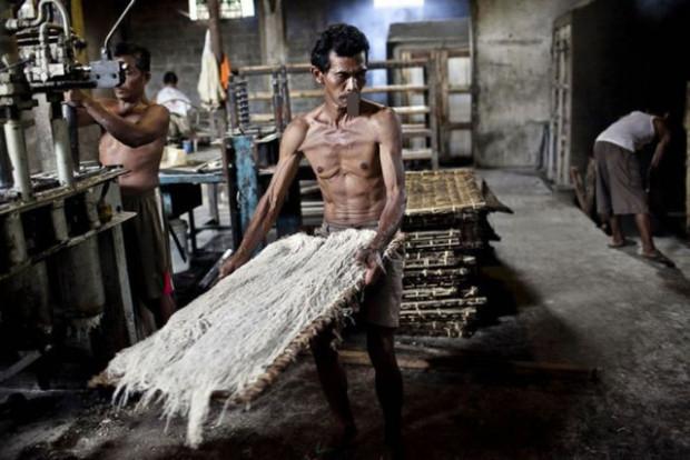 Endonezya'da bir spagetti fabrikası böyle görüntülendi - Page 4