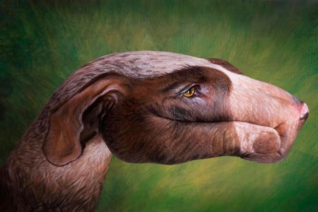 Guido Daniele elleriyle hayvan figürleri resmediyor - Page 4