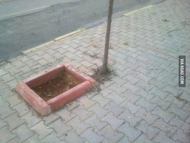 Güldüren Türkiye paylaşımları - Page 1