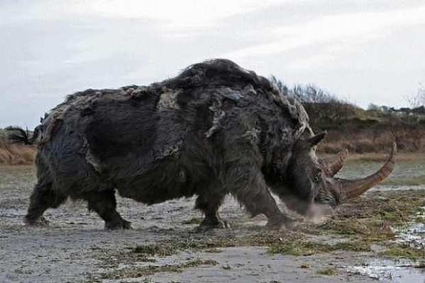 Günümüzde var olan 12 hayvan türünün milyonlarca yıl önce yaşamış dev ataları - Page 4