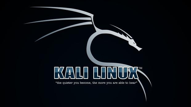 Hacker'lar en çok hangi programları kullanıyor? - Page 2