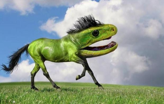 Hayvanlar alemide Photoshop'dan nasibini aldı - Page 4