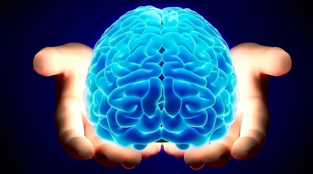 İnsan beyni hakkında bilmediğiniz 20 gerçek - Page 2
