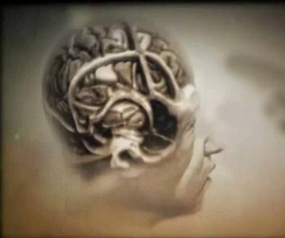 İnsan beyni hakkında gizemler bilgiler - Page 2