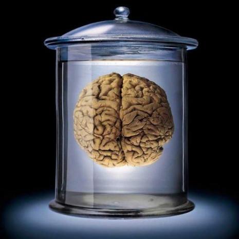 İnsan beyni hakkında gizemler bilgiler - Page 4