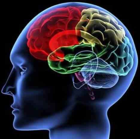 İnsan beyniyle ilgili bilmediklerimiz - Page 4
