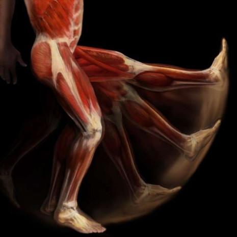 İnsan vücudunun görülmeyen hali - Page 2