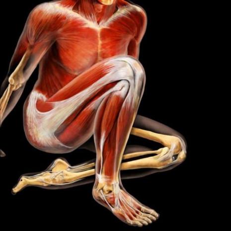 İnsan vücudunun görülmeyen hali - Page 3