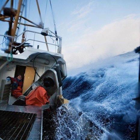 Instagram'da National Geographic rüzgarı esiyor! - Page 1