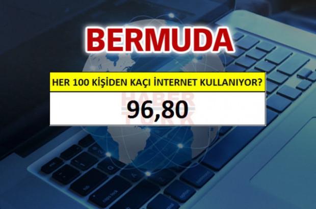 İnterneti en fazla kullanan ülkeler - Page 2