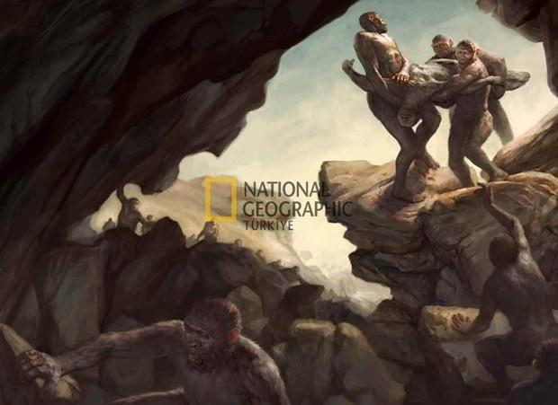 İşre Darvincilerin yeni atası Homo Naledi'nin gizemi - Page 1