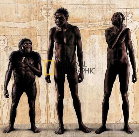 İşre Darvincilerin yeni atası Homo Naledi'nin gizemi - Page 4