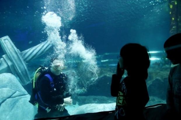 İstanbul Sea Life Akvaryumu'nun açılışı gerçekleşti - Page 3