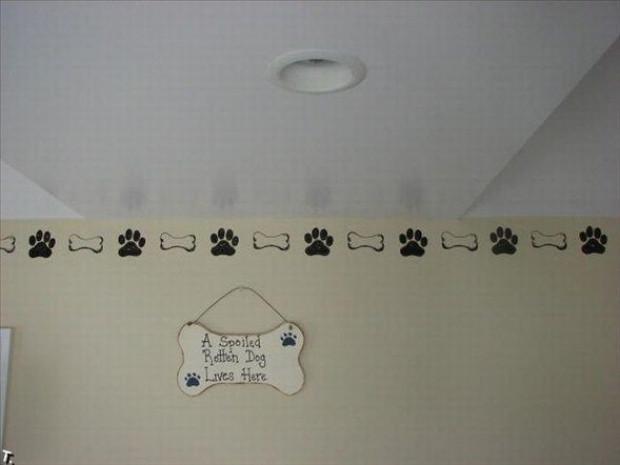 İşte dünyanın en lüks köpek kulübesinden fotoğraflar - Page 2